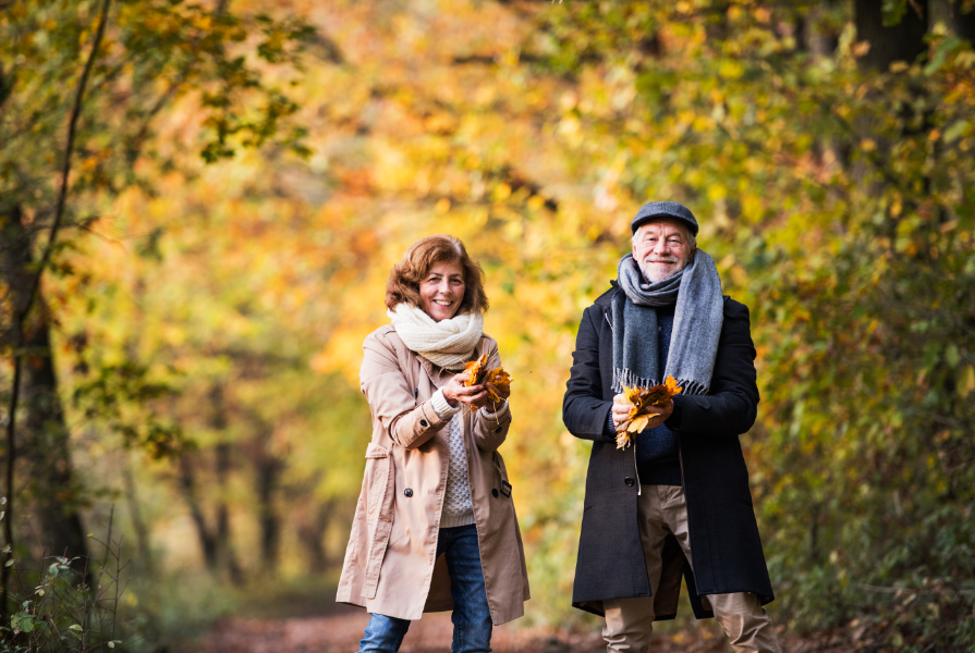 Senior couple walking in forest
